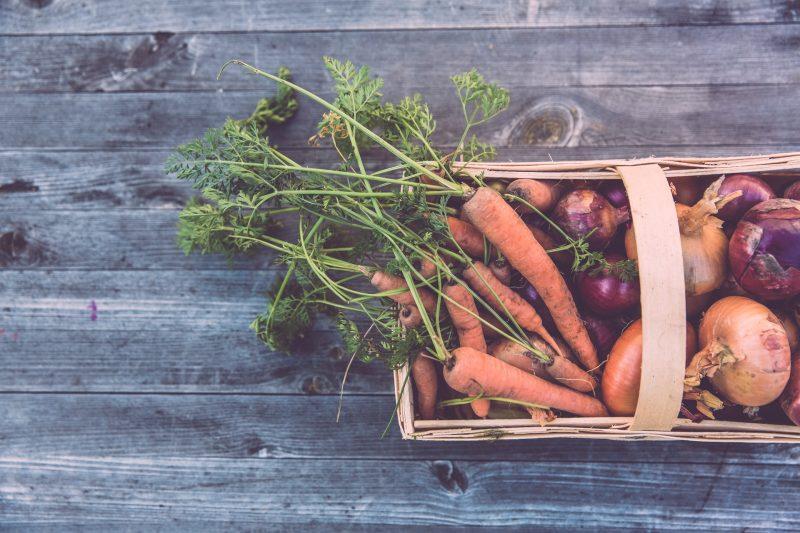 posvoji kmeta_eko sadje in zelenjava